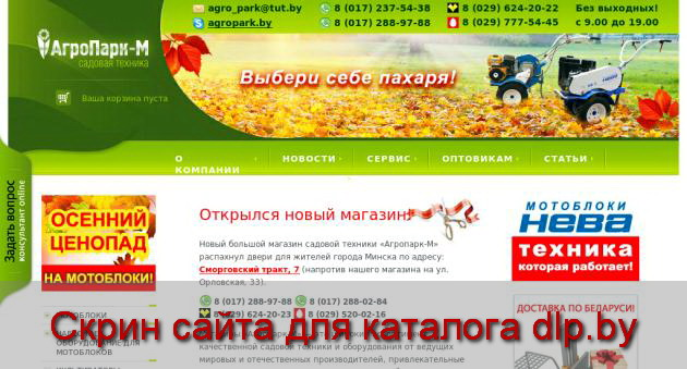 Мопед  MIRMOTO NAKED XT 50-20 - www.agropark.by