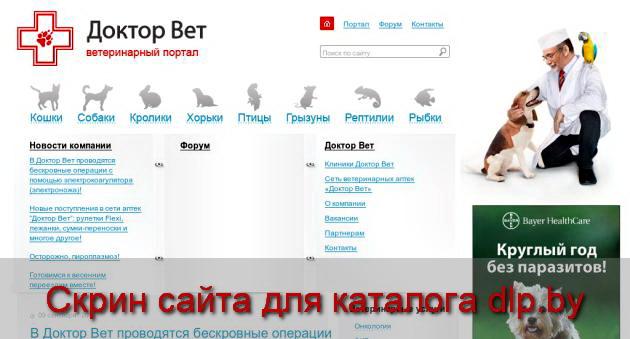 Цистит у кошек - симптомы и лечение - www.vetby.ru.