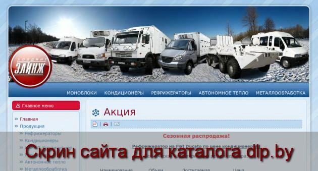 Скрин сайта - www.Elinje.ru  для dlp.by