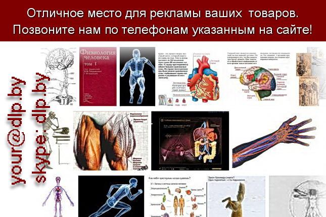 Запрос: «физиология», рубрика: Медицина