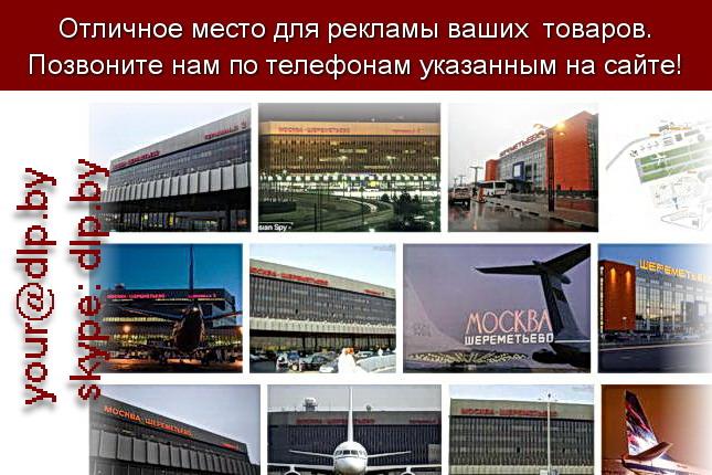 Запрос: «шереметьева аэропорт», рубрика: Авиация