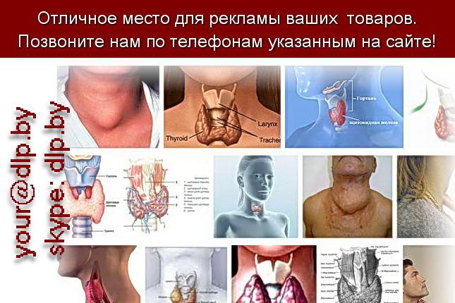 Запрос: «щитовидная железа», рубрика: Медицина